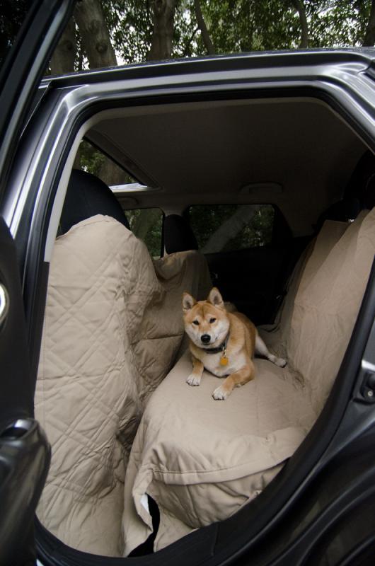 Nissan Juke Interior Back Seat